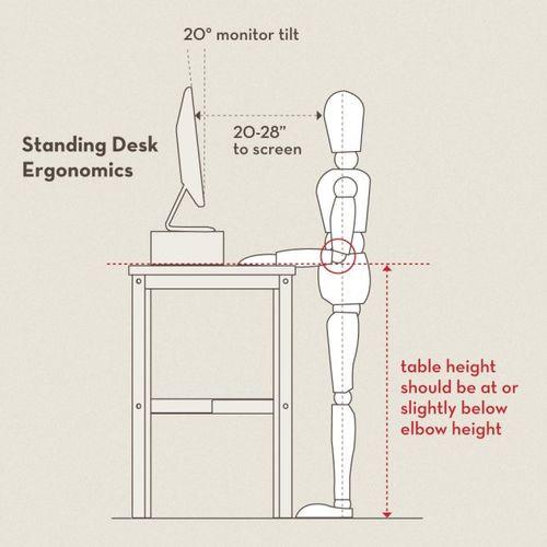 461__630x_standing-desk-ergonomics-v2